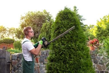 Ausrüstung beim Hecke schneiden