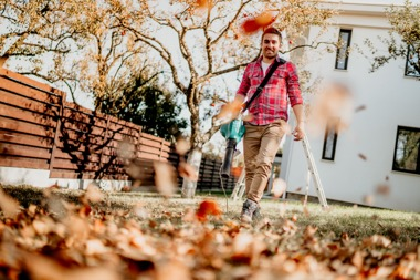Gartenarbeit im Herbst - Laub vom Rasen entfernen