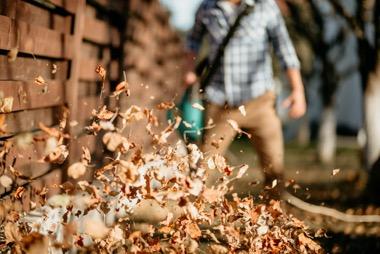 Verwendung von Herbstlaub im Garten